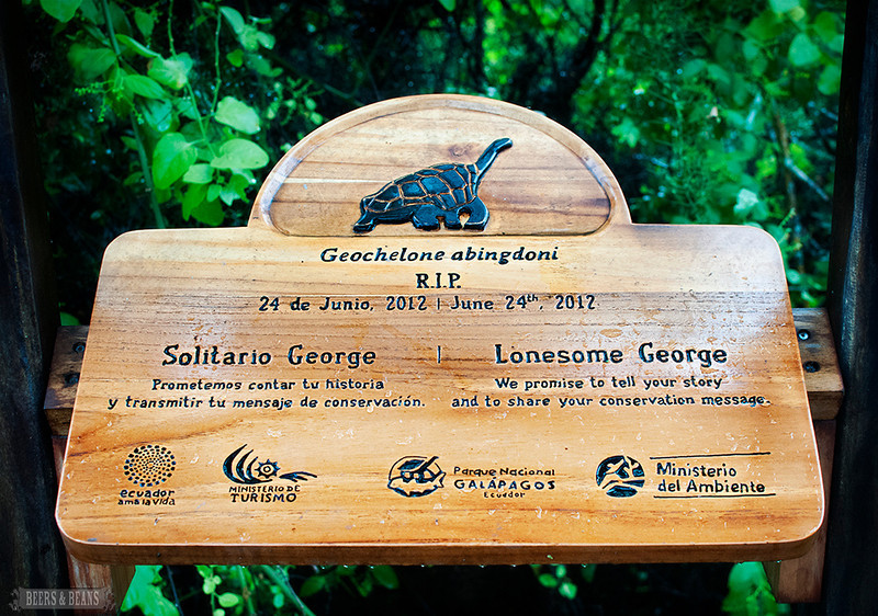 A wooden sign at the Darwin Center for Lonesome George, the world's most famous Galapagos tortoise.