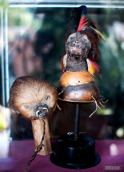 Two shrunken heads from the equator tour in Ecuador.