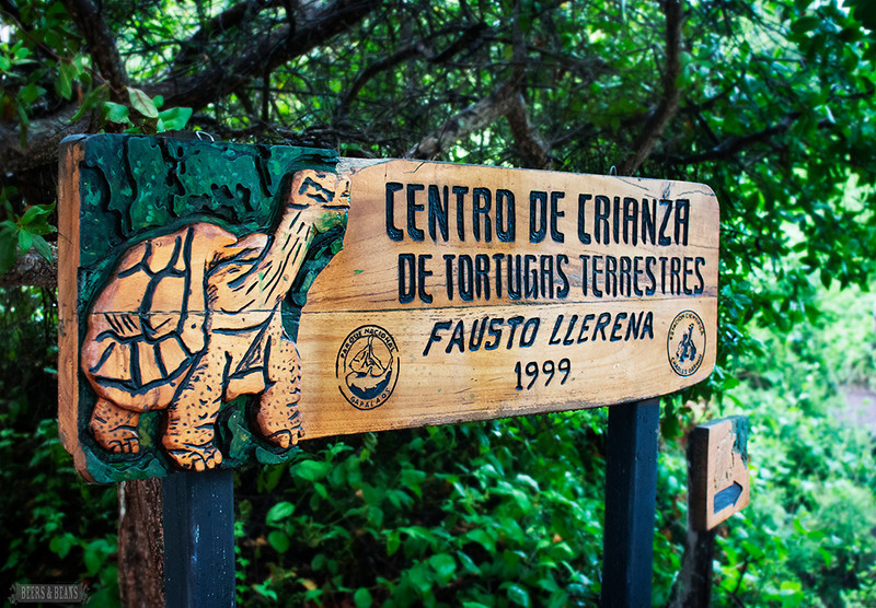 A wooden sign for the Galapagos tortoise at the Darwin Center on Santa Cruz Island.