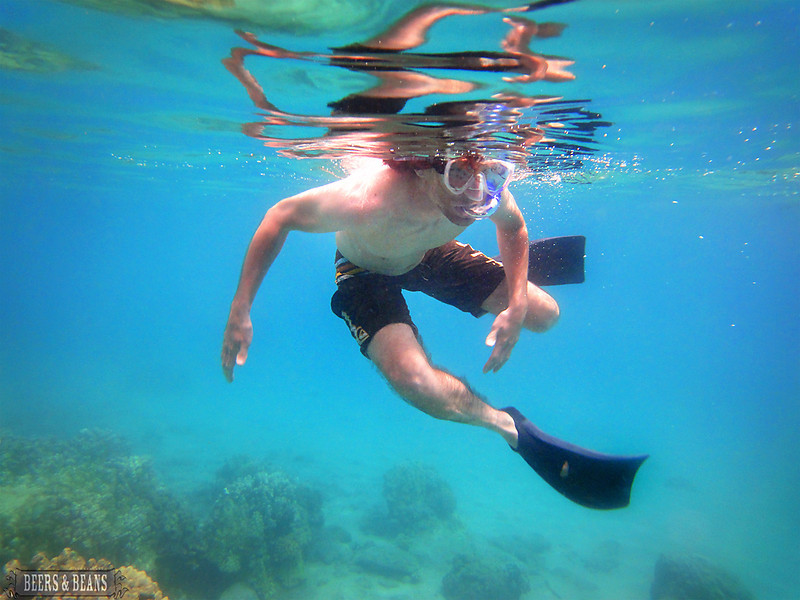i Pp8xgv7 L Snorkeling in Maui   A Photo Essay