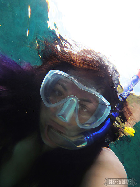i QgDWBTs L Snorkeling in Maui   A Photo Essay