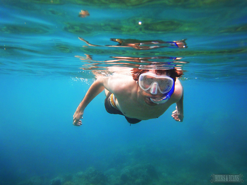 i WrCR9nq L Snorkeling in Maui   A Photo Essay